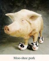 """""""Chic Fil A"""" Cows plug Pigs Feet"""