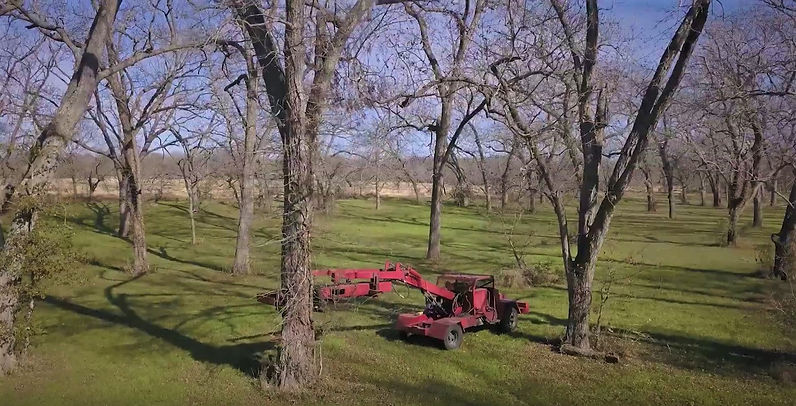 Screenshot_2019-06-20 Pecan Harvesting a