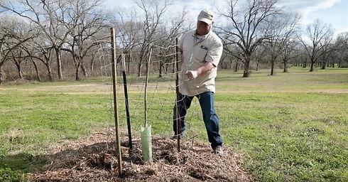 planting_edited.jpg