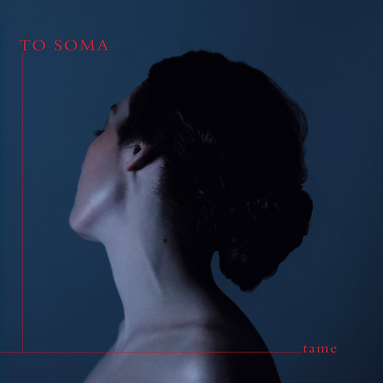 to soma - tame (Vinyl)