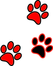 Paws.png