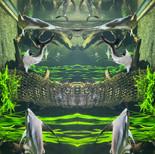 Mirrored world - Aquatis 2