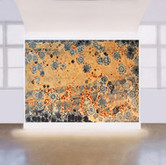 """Orange"" gallery"