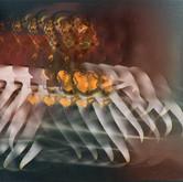 Crabs digital deformation 2