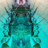 Mirrored world - Aquatis 4