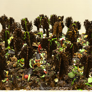 Details of the finished magic forest with candies and chocolate