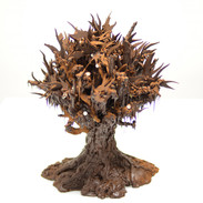 Hand-piped chocolate tree
