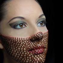 The chocolate veil 1