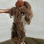Potato dancer