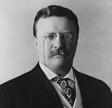President_Theodore_Roosevelt,_1904_edite