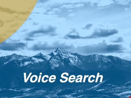 Top 10 Tips for Optimizing Your Campaign for Voice Search
