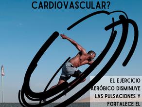Ejercicios cardiovascular