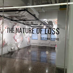 The Nature of Loss