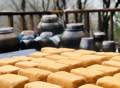 「崔さんによるコチュジャン作りのワークショップ」開催のお知らせ