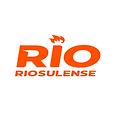 rio sulense.png