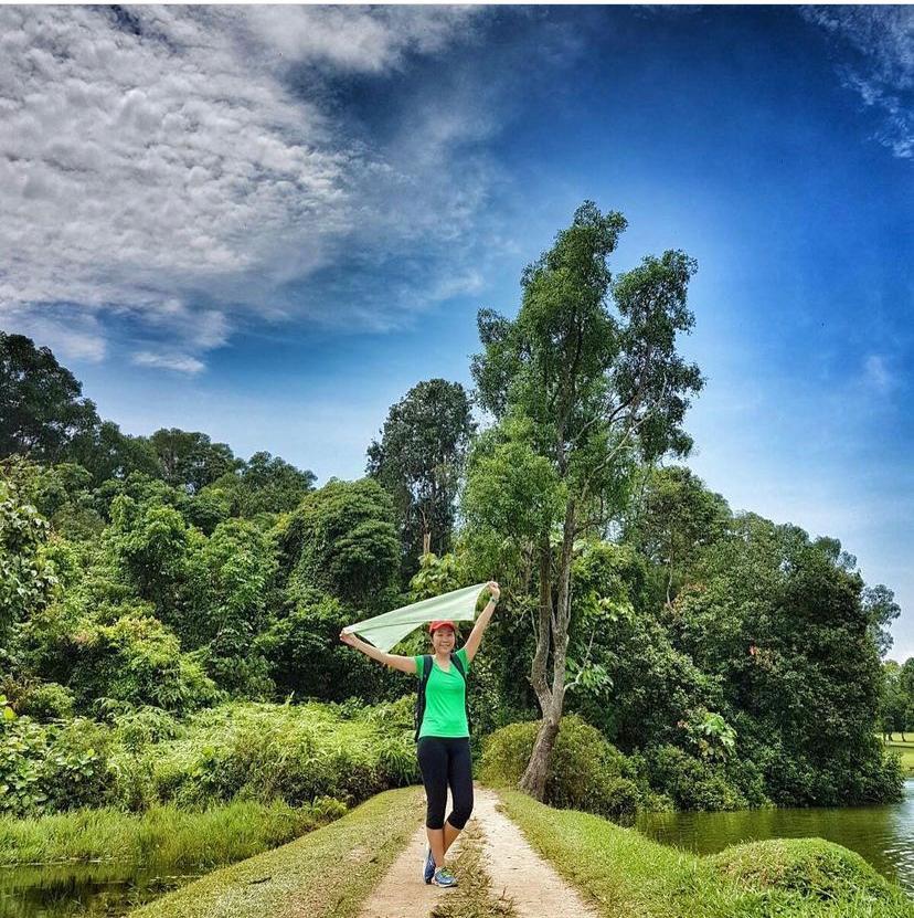 MacRitchie To Bukit Timah Hike
