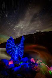 Chromatic Aura of the Rocky Mountain Nymph.jpg