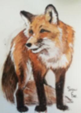 fox_small.jpg