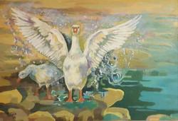 Patos de la laguna (II)