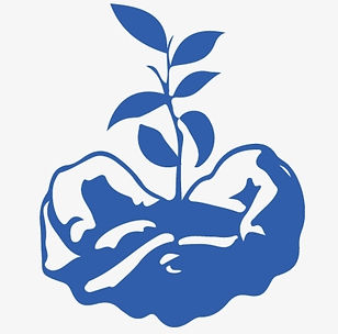 197-1976461_hand-holding-a-seedling-icon