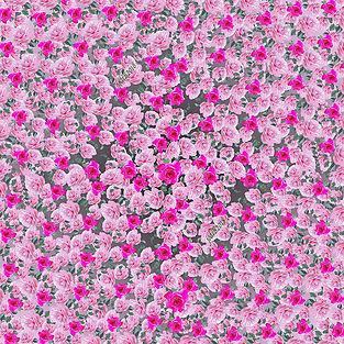rose riot for website.jpg