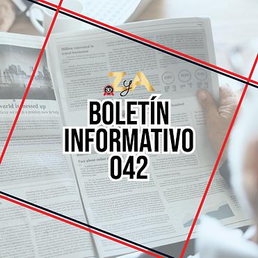 Boletin-InformativoZyA042.png