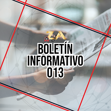 Boletin-InformativoZyA-013.png