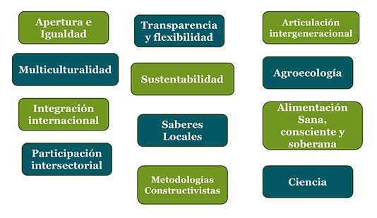 Libro_Verde-Guía_organizativa_RIHE_novi