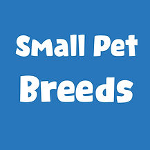 Small pet breeds.jpg