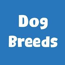 dog breeds.jpg