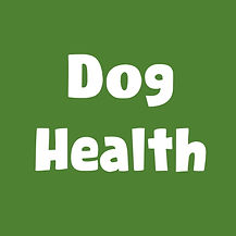 Dog health.jpg