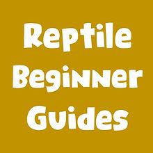 reptile beginner guides.jpg