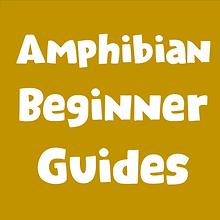 Amphibian Beginner Guides.png