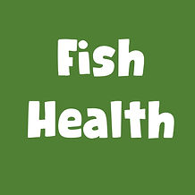 Fish health tile.jpg