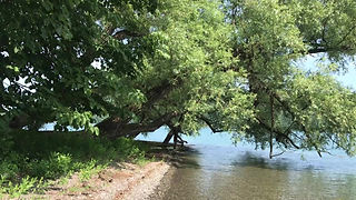Otsego Lake July 2019