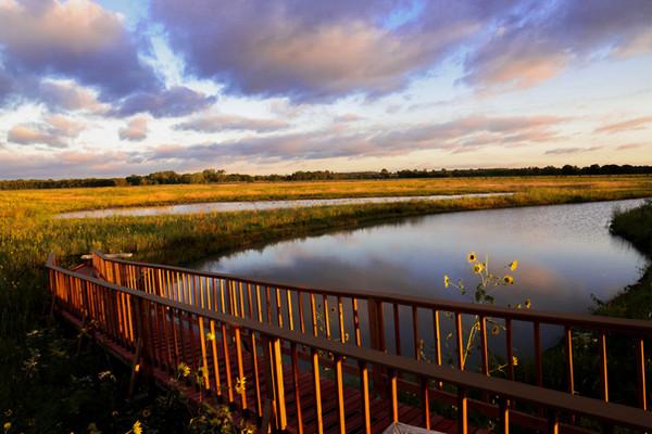 the sun sets on baker wetlands