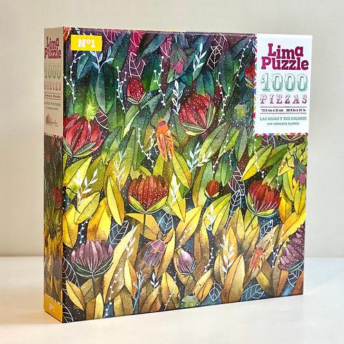 Nº1 Las hojas y sus colores