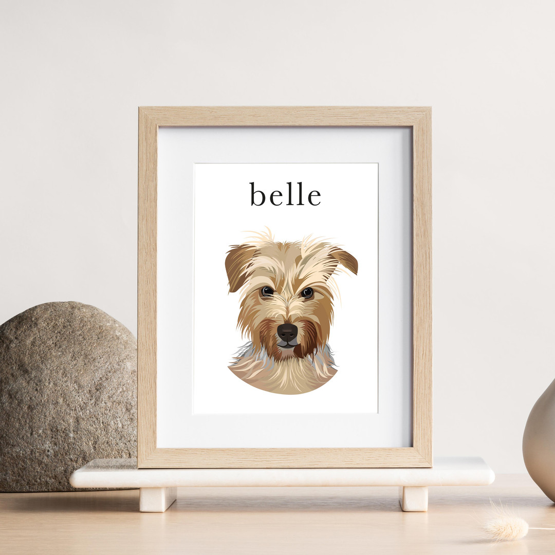 pet portrait custom illustration.jpg