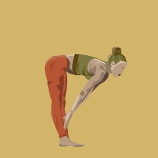 yoga 3-01.png
