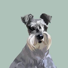 pet portrait colours-11.png