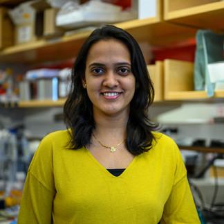 Manalee Surve, PhD