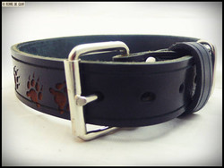 collier pour chien