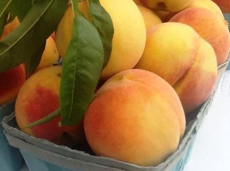 Burrata & Grilled Peaches