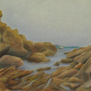 Point Lobos #6