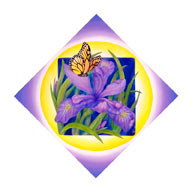 Iris and Butterfly