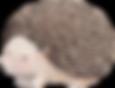 Kreslení ježek