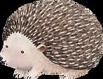 Zeichnung von Hedgehog