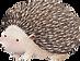 Tekening van Hedgehog