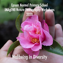 ENPS-2020Cover.png