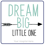 Copy of Dream Big Little One.png